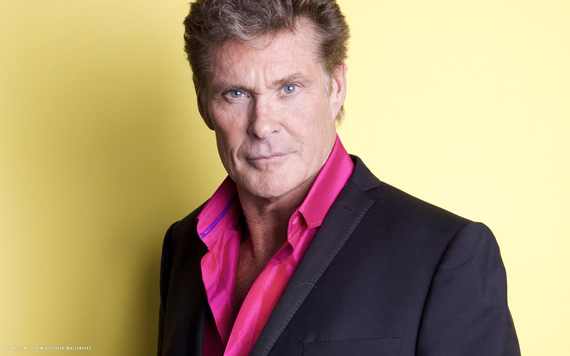 David Hasselhoff Net Worth, Bio 2017-2016, Wiki - REVISED! - Richest ...
